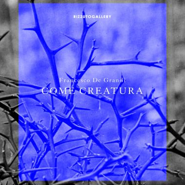 Come Creatura