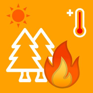 Protezione civile regionale - Pericolosità ALTA di rischio incendi per la giornata di domani 25 agosto