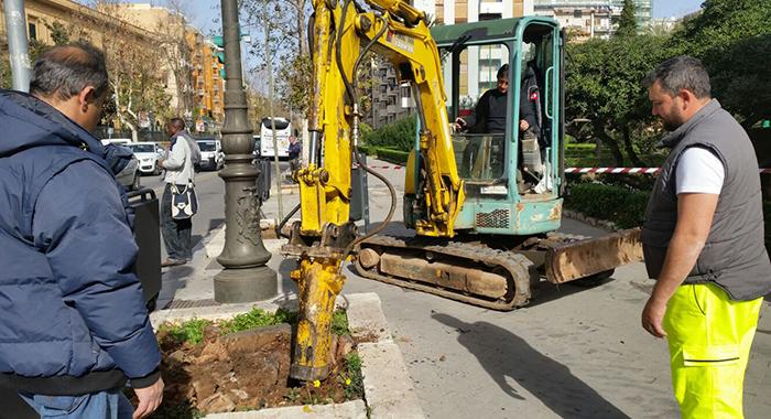 Decoro. Proseguono lavori per nuovi alberi in via Libertà