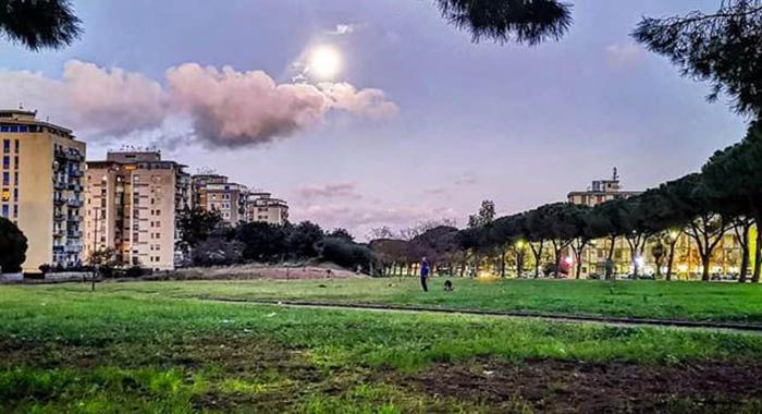 Sport. Comune autorizza l'utilizzo delle aree verdi cittadine per attività sportive in forma organizzata